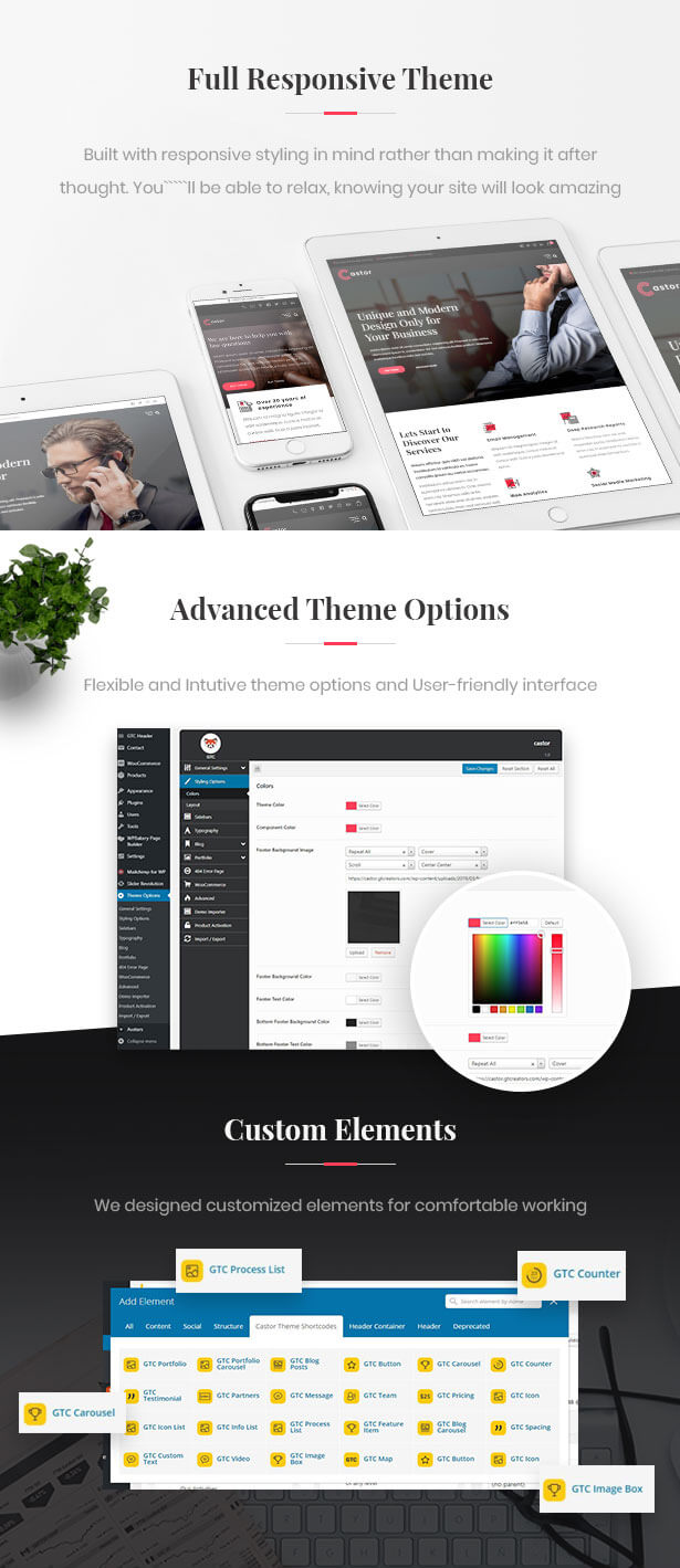 Castor - Business Consulting WordPress Theme - 2