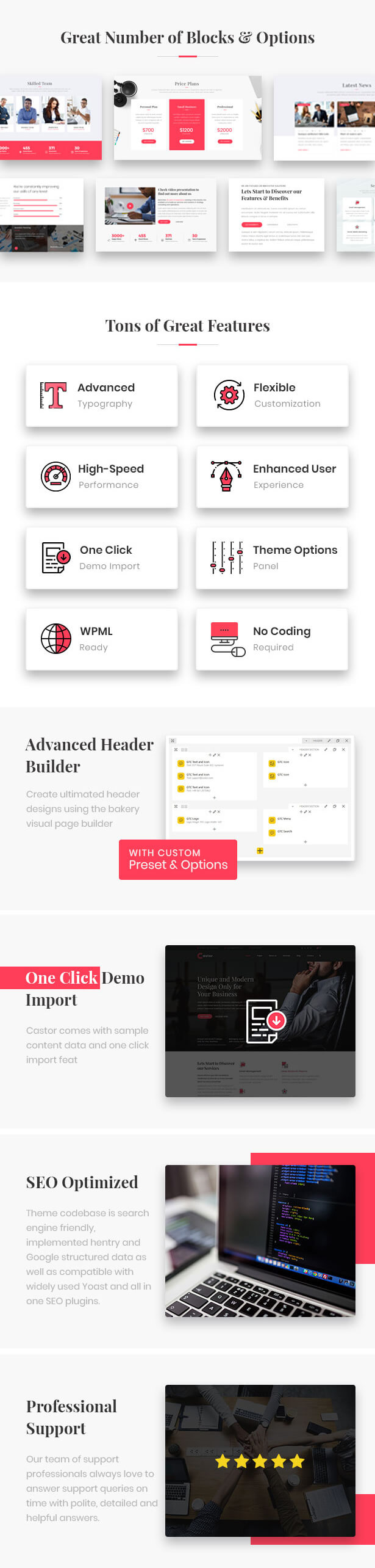 Castor - Business Consulting WordPress Theme - 3